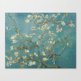 Almond Blossom - Vincent Van Gogh Canvas Print
