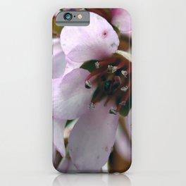 Pale Petals iPhone Case