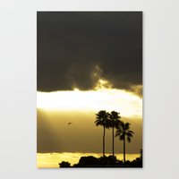 florida Canvas Prints featuring Florida by Kyle Edwards
