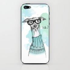 Funny Greyhound iPhone & iPod Skin