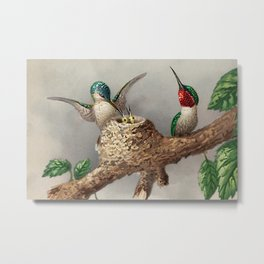 Hummingbirds & Chicks Nesting portrait nature painting Metal Print