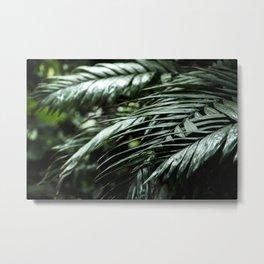 Tropical leaves 03 Metal Print