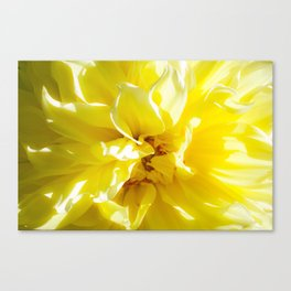 yellowSea Canvas Print