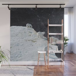 Flat Earth Wall Mural