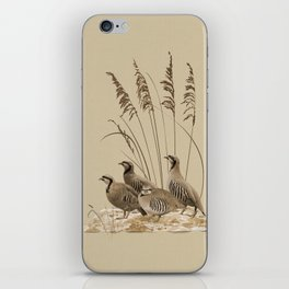 Chukar Partridges iPhone Skin