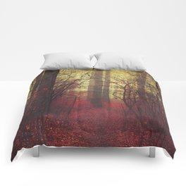 way in Comforters