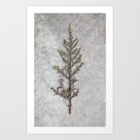 tiny tree Art Print