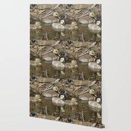 Goslings Wallpaper