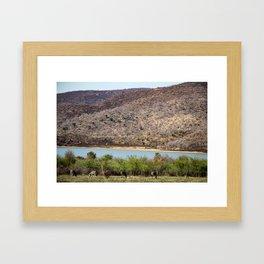 Mountains & Zebras Framed Art Print