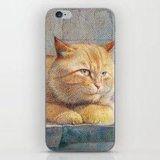 Ginger iPhone & iPod Skin