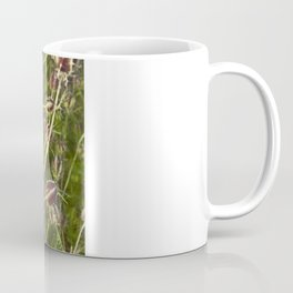 NIGELLA - Love-In-A-Mist Coffee Mug