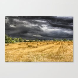 The Farm Monochrome and Color Canvas Print