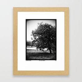 Air is just a breeze Framed Art Print