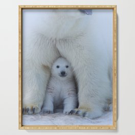 Polar Bear Mother and Cub Serving Tray