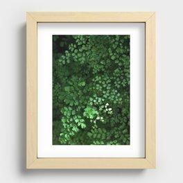 Maidenhair Recessed Framed Print