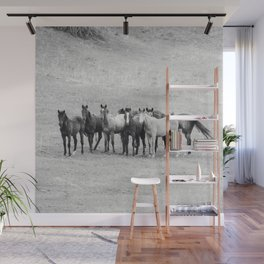 Young Horses Wall Mural