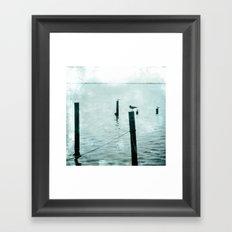 Four Seagulls Framed Art Print