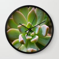 succulent Wall Clocks featuring Succulent by Wandering Star Trails