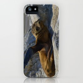 Just Kickin It iPhone Case