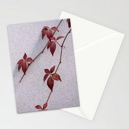 Parthenocissus Henryana Plant Stationery Cards