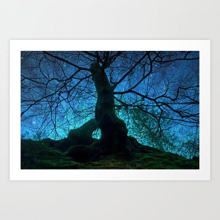 Tree under a spangled sky (light) Art Print