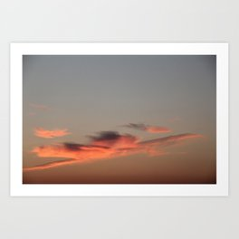 Come fly with me - Irish Midsummer Evening IV Art Print
