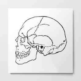 Skull 1 Metal Print