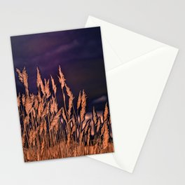 Abstract beach grass Stationery Cards