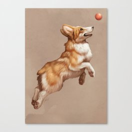 Catch the ball Canvas Print