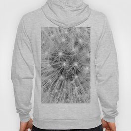 Black and white dandelion head Hoody