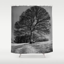 A Tree Shaped by the Wind Shower Curtain