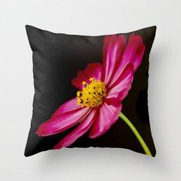 Sensation Cosmos Throw Pillow
