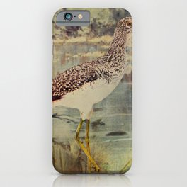Vintage Print - Birds and Nature (1904) - Greater Yellow-Legs iPhone Case