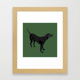 Nicky Framed Art Print