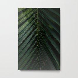 Dark green palm leaf Thailand Metal Print