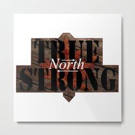 True North Metal Print