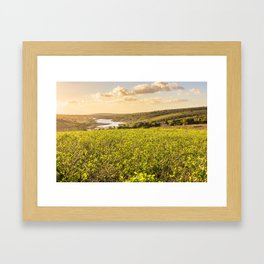 Coffe Plantation Framed Art Print
