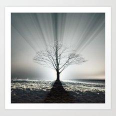 Rays of Fog Art Print