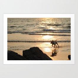 Play time at the beach Art Print