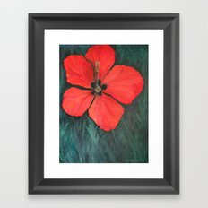 Christmas Hibiscus Framed Art Print