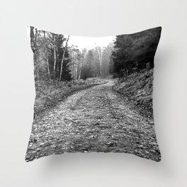 Trail On Throw Pillow