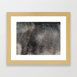 CAT FUR Framed Art Print