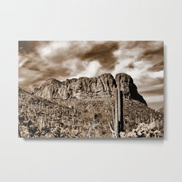 Beauty and Power Metal Print