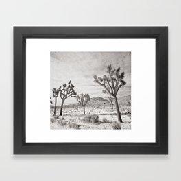 Joshua Tree Grey By CREYES Framed Art Print