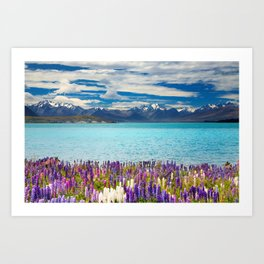 Landscape with Lupin Flowers Art Print
