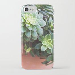 Succulent Loveliness iPhone Case