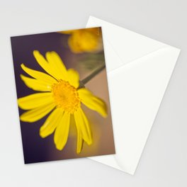 Bright Yellow Daisy - floral photography Stationery Cards