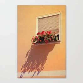Window Sill Canvas Print