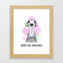 Italian Greyhound smiles Framed Art Print