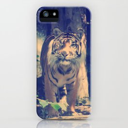 The One Eyed Sumatran Tiger. iPhone Case
